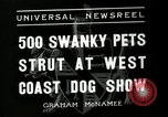 Image of annual dog show Santa Cruz California USA, 1936, second 5 stock footage video 65675037654