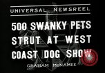 Image of annual dog show Santa Cruz California USA, 1936, second 6 stock footage video 65675037654