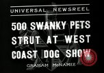Image of annual dog show Santa Cruz California USA, 1936, second 7 stock footage video 65675037654