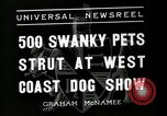 Image of annual dog show Santa Cruz California USA, 1936, second 8 stock footage video 65675037654