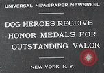 Image of dog heroes New York United States USA, 1932, second 1 stock footage video 65675037696
