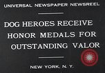 Image of dog heroes New York United States USA, 1932, second 2 stock footage video 65675037696