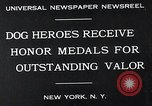 Image of dog heroes New York United States USA, 1932, second 3 stock footage video 65675037696