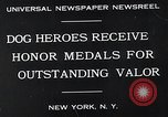 Image of dog heroes New York United States USA, 1932, second 7 stock footage video 65675037696