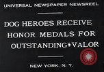 Image of dog heroes New York United States USA, 1932, second 8 stock footage video 65675037696