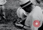 Image of Russian farmers South Dakota United States USA, 1954, second 4 stock footage video 65675037718