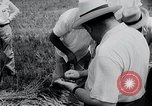 Image of Russian farmers South Dakota United States USA, 1954, second 5 stock footage video 65675037718