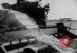 Image of Russian farmers South Dakota United States USA, 1954, second 10 stock footage video 65675037718