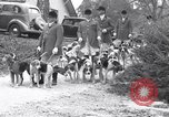 Image of hounds United States USA, 1935, second 10 stock footage video 65675037726