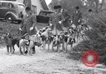 Image of hounds United States USA, 1935, second 12 stock footage video 65675037726