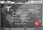Image of rubber extraction United States USA, 1921, second 9 stock footage video 65675037752