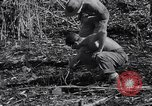 Image of Japanese mine Burma, 1945, second 8 stock footage video 65675037785