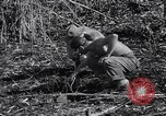 Image of Japanese mine Burma, 1945, second 10 stock footage video 65675037785