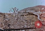 Image of Atomic bomb damage Nagasaki Japan, 1946, second 6 stock footage video 65675037811