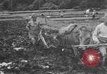 Image of Japanese farmer Japan, 1948, second 11 stock footage video 65675037840
