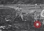 Image of Japanese farmer Japan, 1948, second 12 stock footage video 65675037840