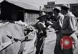 Image of American soldiers Japan, 1948, second 4 stock footage video 65675037841
