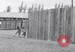 Image of Cleveland Indians baseball team in Spring training Fort Myers Florida USA, 1941, second 8 stock footage video 65675037922