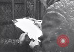 Image of Sir Bernard Law Montgomery Moscow Russia Soviet Union, 1948, second 12 stock footage video 65675037969