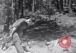 Image of crystal United States USA, 1940, second 4 stock footage video 65675037981