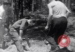 Image of crystal United States USA, 1940, second 5 stock footage video 65675037981