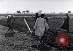 Image of farmer Egypt, 1945, second 3 stock footage video 65675038043
