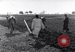 Image of farmer Egypt, 1945, second 4 stock footage video 65675038043