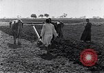 Image of farmer Egypt, 1945, second 5 stock footage video 65675038043
