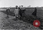 Image of farmer Egypt, 1945, second 7 stock footage video 65675038043