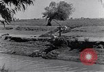 Image of farmer Egypt, 1945, second 12 stock footage video 65675038043