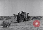 Image of Bedouins Sinai Peninsula, 1945, second 10 stock footage video 65675038045