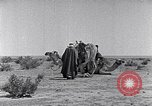 Image of Bedouins Sinai Peninsula, 1945, second 11 stock footage video 65675038045