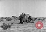 Image of Bedouins Sinai Peninsula, 1945, second 12 stock footage video 65675038045