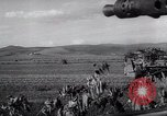 Image of German troops Russia, 1944, second 9 stock footage video 65675038068