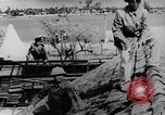 Image of North Vietnamese Vietcong soldiers at war Vietnam, 1966, second 8 stock footage video 65675038098
