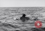 Image of Allied troops France, 1944, second 8 stock footage video 65675038173