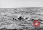 Image of Allied troops France, 1944, second 9 stock footage video 65675038173