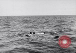 Image of Allied troops France, 1944, second 11 stock footage video 65675038173
