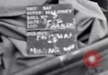 Image of American troops France, 1944, second 3 stock footage video 65675038182