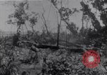 Image of American infantrymen Bougainville Island Papua New Guinea, 1944, second 9 stock footage video 65675038249