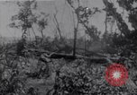 Image of American infantrymen Bougainville Island Papua New Guinea, 1944, second 10 stock footage video 65675038249