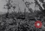 Image of American infantrymen Bougainville Island Papua New Guinea, 1944, second 11 stock footage video 65675038249