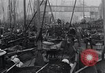 Image of Herring fish United Kingdom, 1934, second 2 stock footage video 65675038343