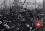 Image of Herring fish United Kingdom, 1934, second 3 stock footage video 65675038343