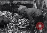 Image of Herring fish United Kingdom, 1934, second 5 stock footage video 65675038343
