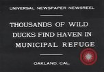 Image of honker ducks Oakland California USA, 1931, second 1 stock footage video 65675038349