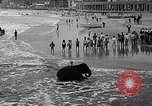 Image of elephant Atlantic City New Jersey USA, 1937, second 12 stock footage video 65675038442
