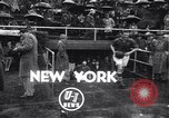 Image of soccer match New York United States USA, 1948, second 1 stock footage video 65675038586
