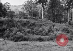 Image of jungle warfare training Canungra Australia, 1943, second 6 stock footage video 65675038652