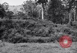Image of jungle warfare training Canungra Australia, 1943, second 7 stock footage video 65675038652